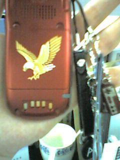 eagle1.jpg
